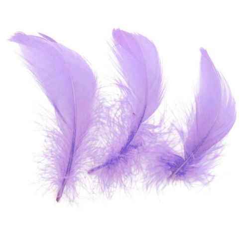 Lilac Goose Coquille Feathers x 50