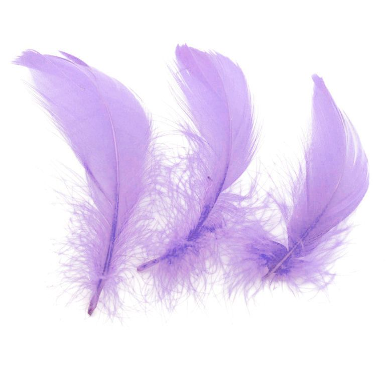 Lilac Goose Coquille Feathers x 25
