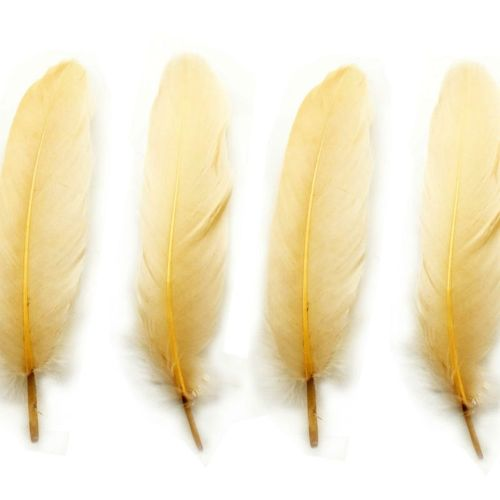 Cream Goose Quill Feathers x 4
