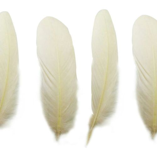 Ivory Goose Quill Feathers x 4