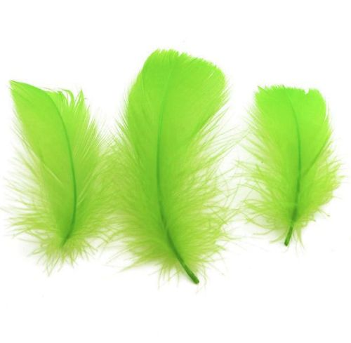 Lime Green Goose Coquille Feathers x 50