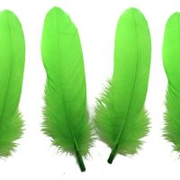 Lime Green Goose Quill Feathers x 4