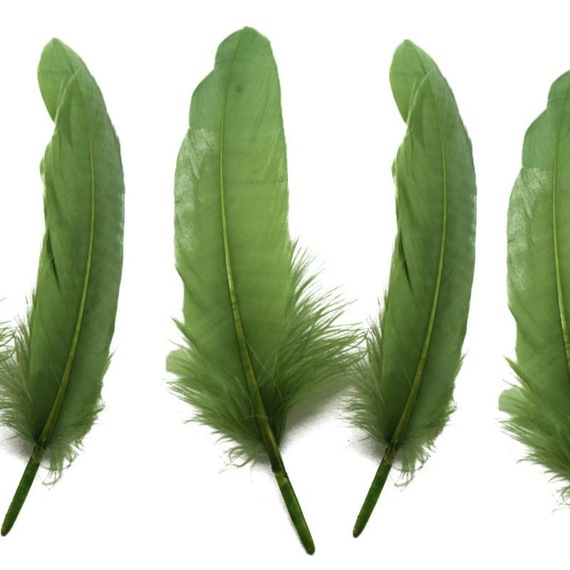 Olive Moss Green Goose Quill Feathers x 4