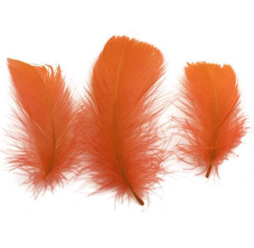 Orange Goose Coquille Feathers x 50