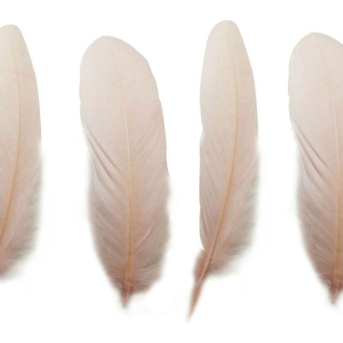 Pale Peach Goose Quill Feathers x 4