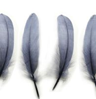 Silver Goose Quill Feathers x 4