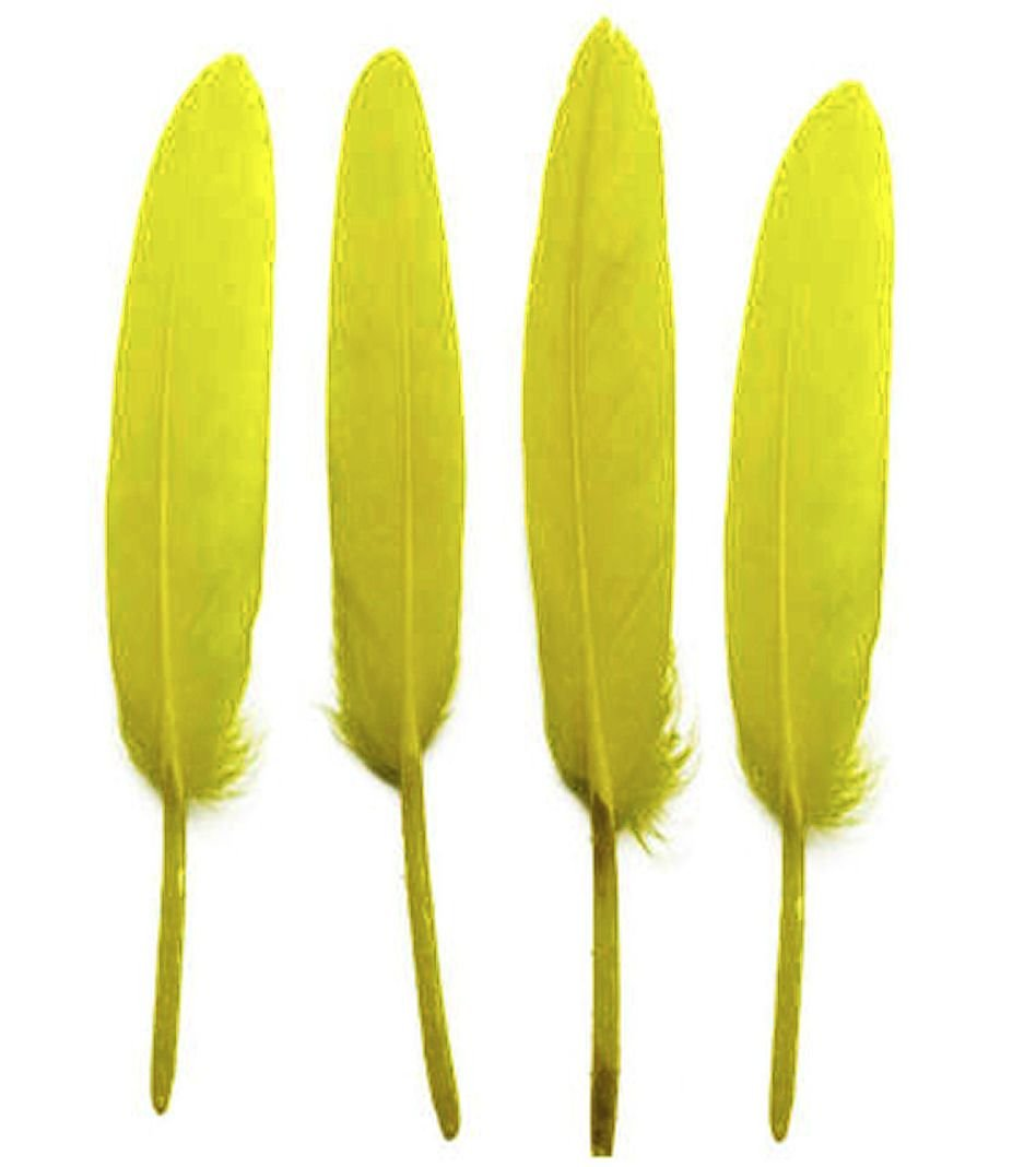 Bright Yellow Goose Quill Feathers x 10