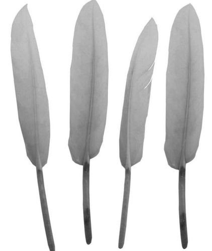 Light Silver Goose Quill Feathers x 10