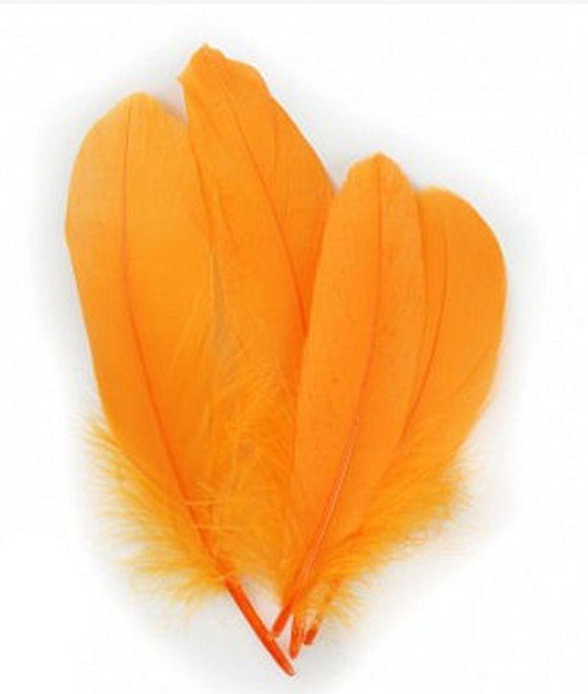 Mango Orange Parried Goose Pallette Feathers x 10