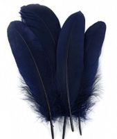 Navy Blue Parried Goose Pallette Feathers x 5