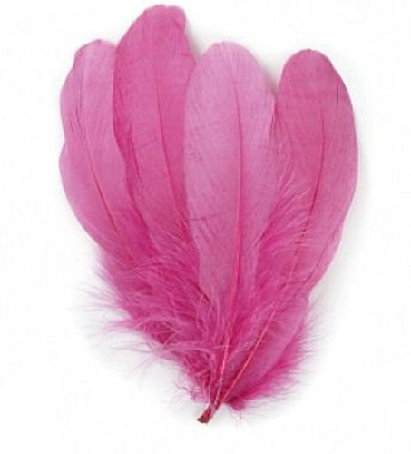 Pink Raspberry Parried Goose Pallette Feathers x 10