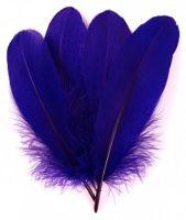 Regal Purple Parried Goose Pallette Feathers x 5