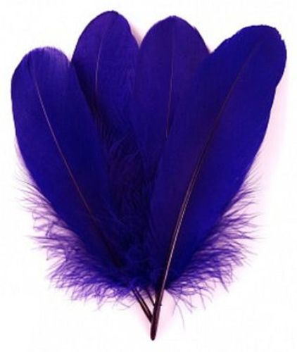 Regal Purple Parried Goose Pallette Feathers x 10