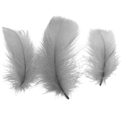 Silver Feathers - 100 Goose Coquille Feathers