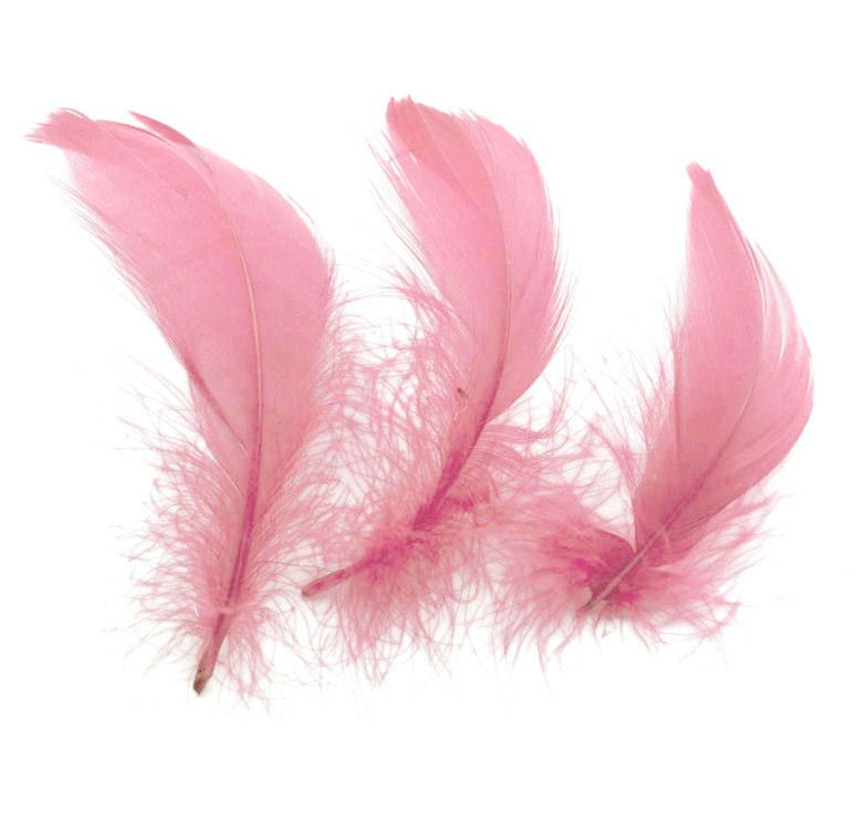 Baby Pink Goose Coquille Feathers x 25