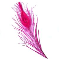 Dark Pink Peacock Eye Tail Feather
