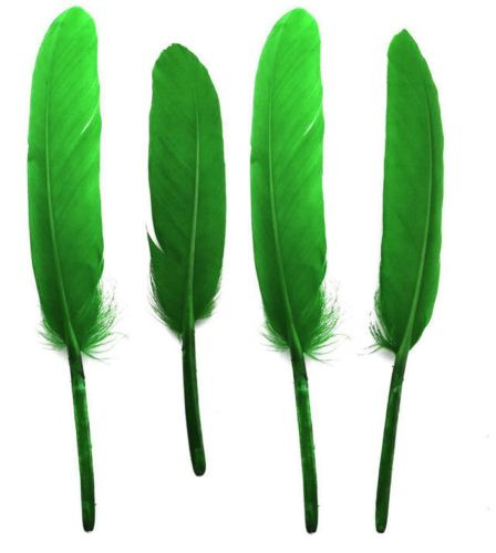Kelly Green Goose Quill Feathers x 10