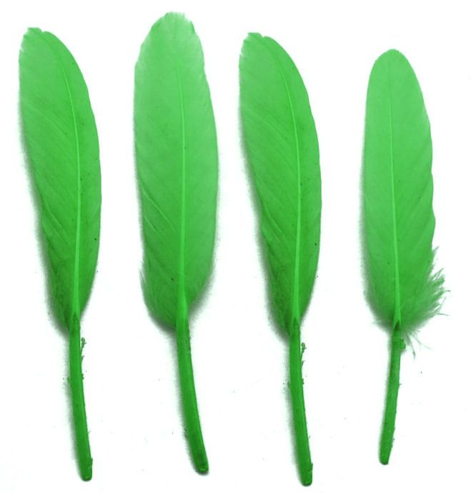 Green Goose Quill Feathers x 10