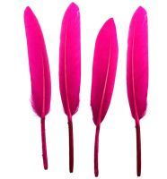Bright Pink Goose Quill Feathers x 10