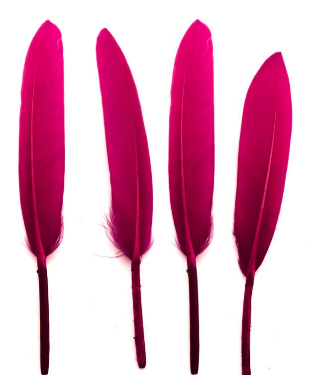 Dark Pink Goose Quill Feathers x 10