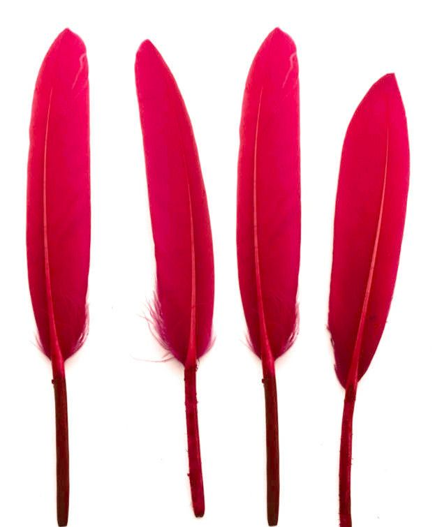 Strawberry Pink Goose Quill Feathers x 10