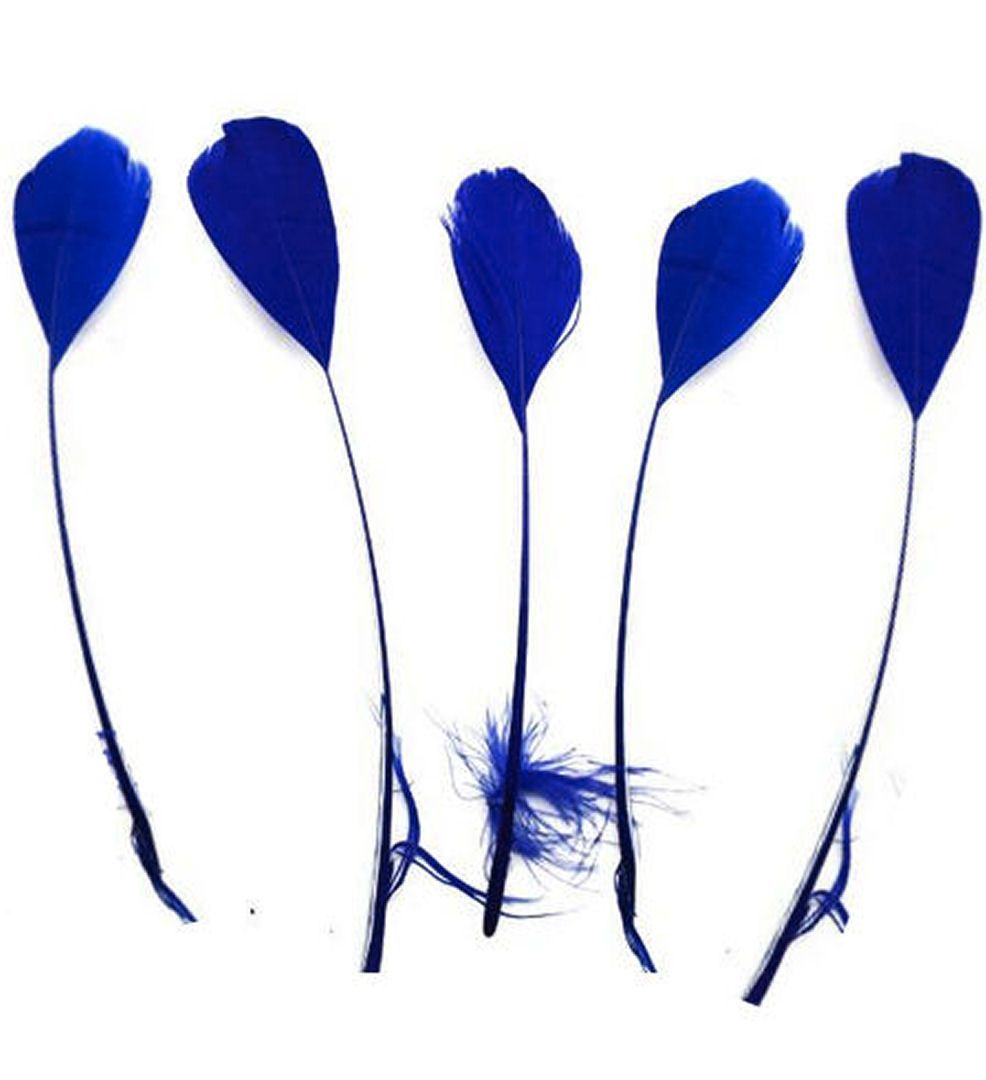 Royal Blue Feathers Stripped Coque Style