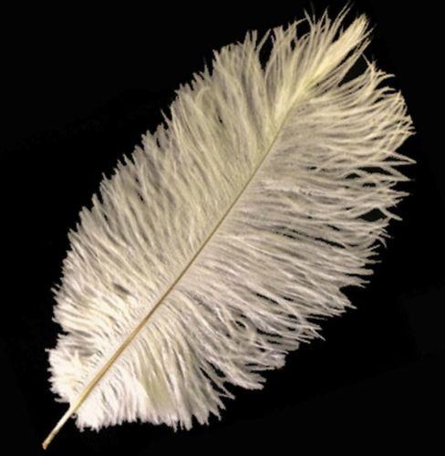 Cream Ostrich Feather