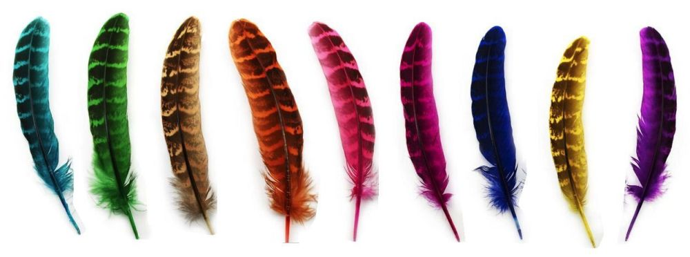 pheasant feathers in assorted shades