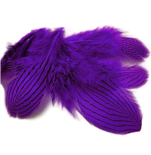 Purple Silver Pheasant Feathers x 5