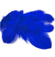 Royal Blue Silver Pheasant Feathers x 5