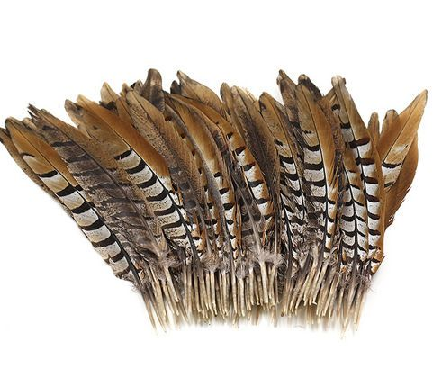 Natural Reeves Pheasant Tail Feather (4 to 6 inch)