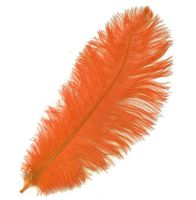 Orange Ostrich Feather