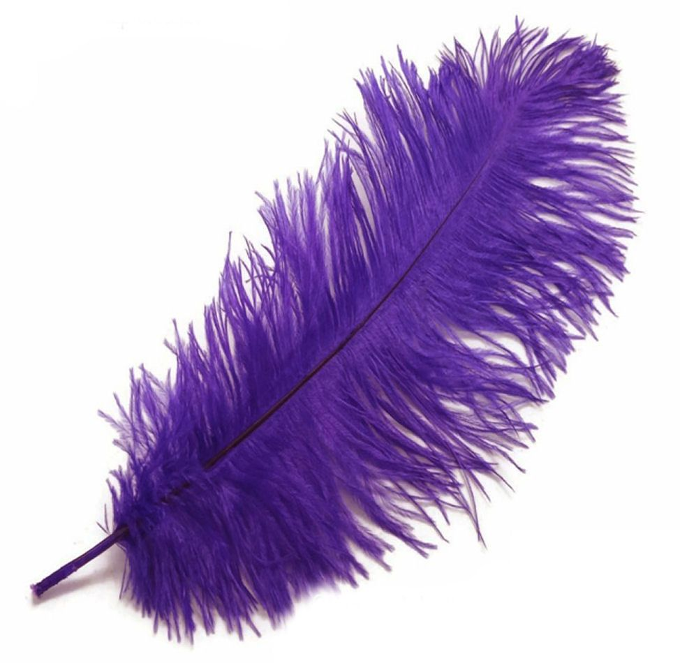 Purple Ostrich Feather