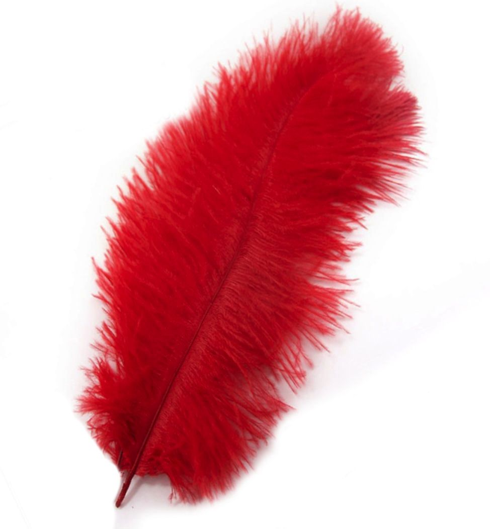 Red Ostrich Feather