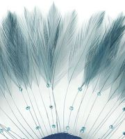 Country Blue Rooster Feathers Hackles Stripped x 10