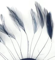 Navy Blue Rooster Feathers Hackles Stripped x 10