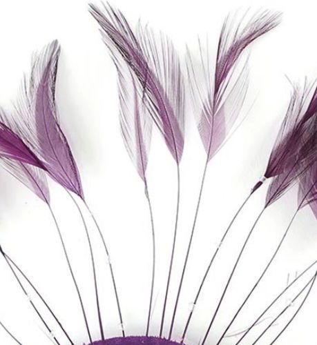 Plum Purple Rooster Feathers Hackles Stripped x 10