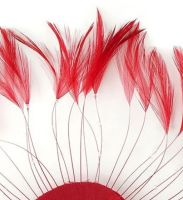 Red Rooster Feathers Hackles Stripped x 10