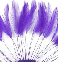 Regal Purple Rooster Feathers Hackles Stripped x 10