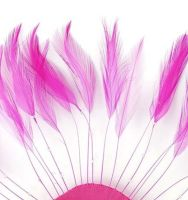 Dark Pink Rooster Feathers Hackles Stripped x 10