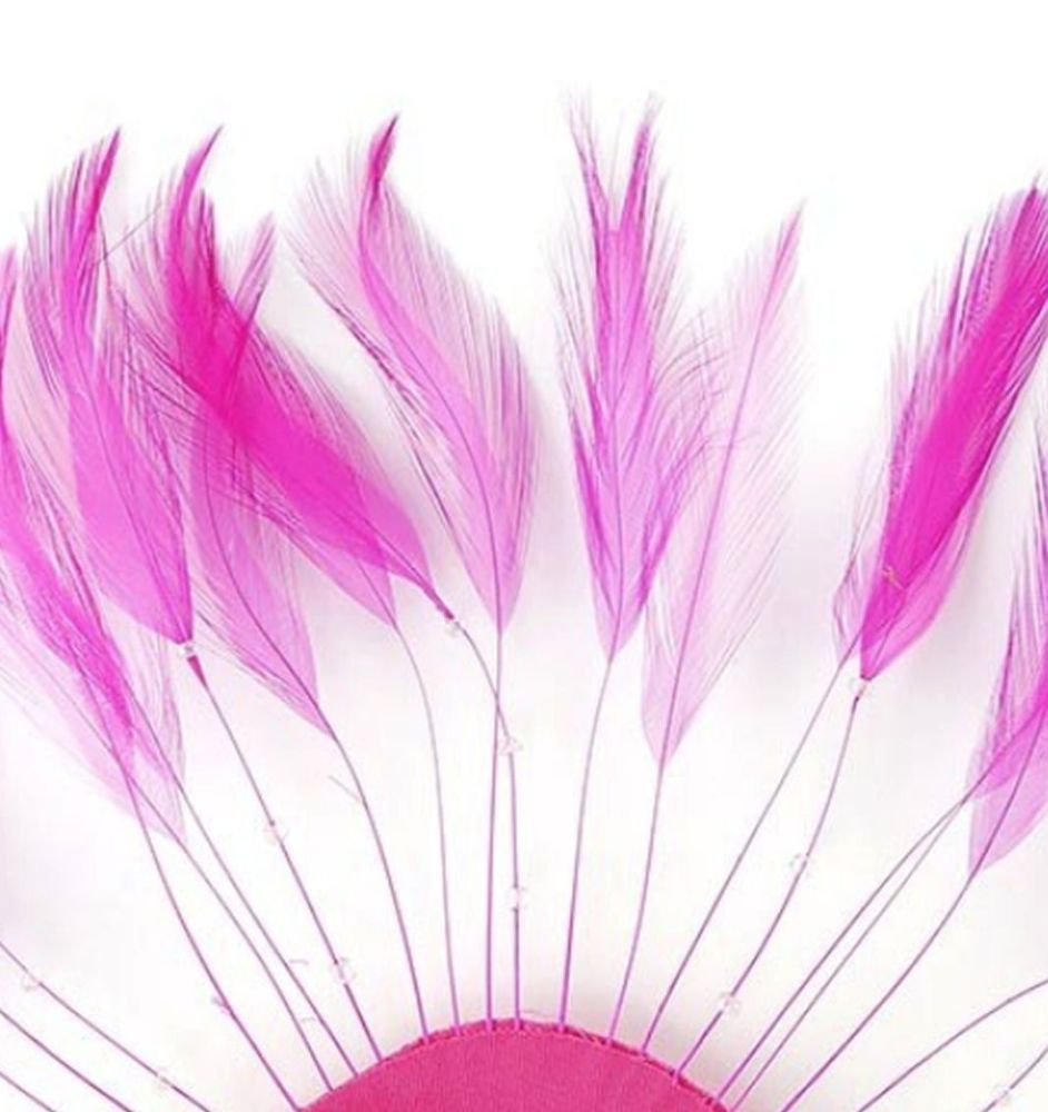 Shocking Pink Rooster Feathers Hackles Stripped x 10