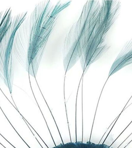 Teal Rooster Feathers Hackles Stripped x 10