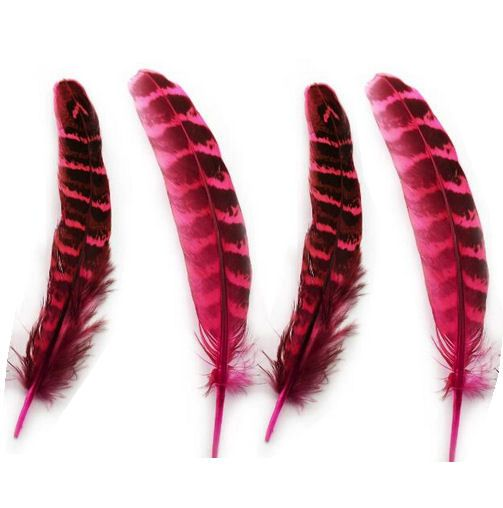 Pink Female Ringneck Pheasant Tail Feathers