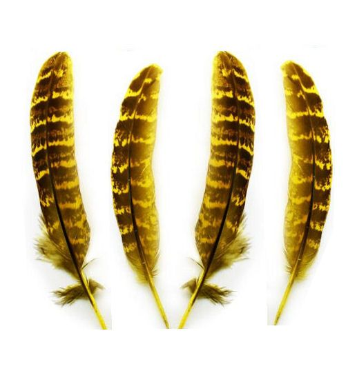 Yellow Female Ringneck Pheasant Tail Feathers