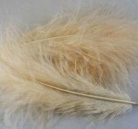 Champagne Marabou Feathers