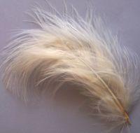 Eggshell Large Marabou Feathers