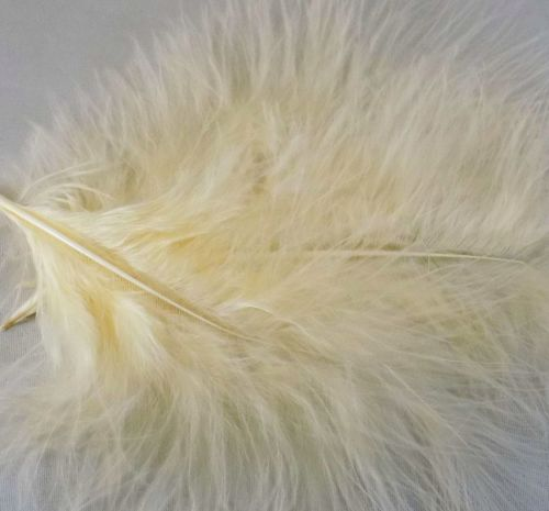 Cream Marabou Feathers Handpicked x 12
