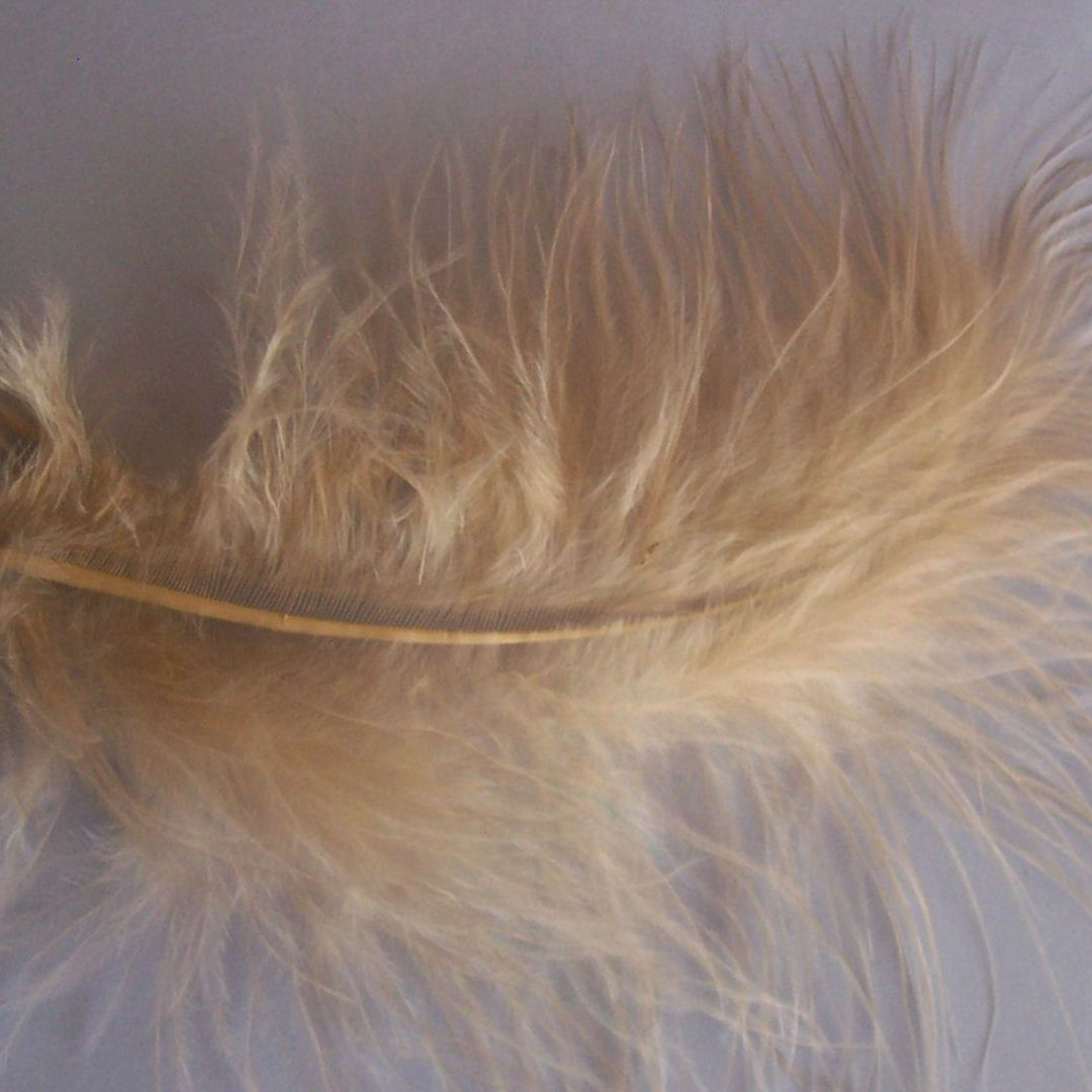 Beige Marabou Feathers