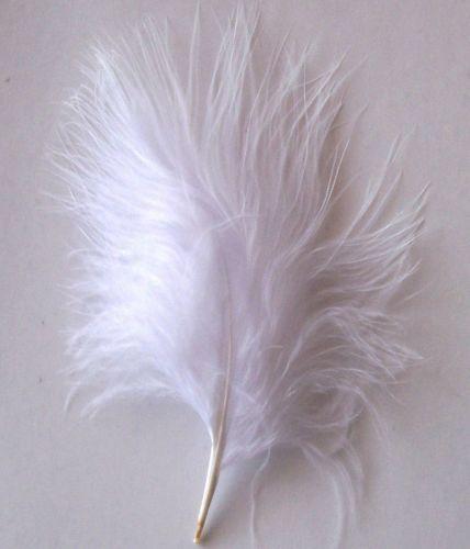 White Marabou Feathers