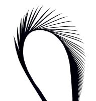 Black Goose Biot Feather